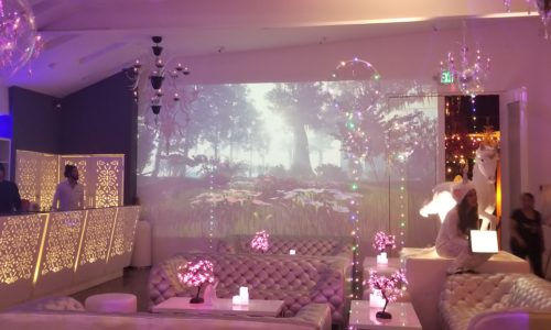 Projection forest scene